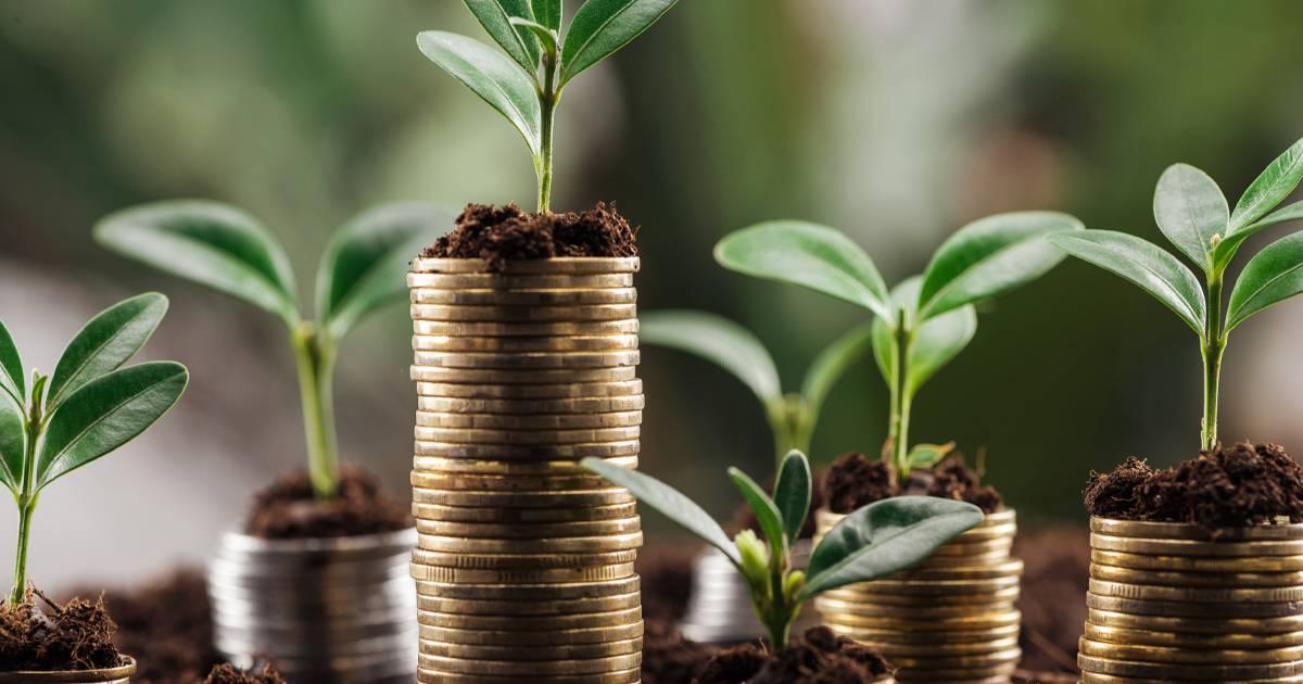 Vem kan ta del av lånegarantin?